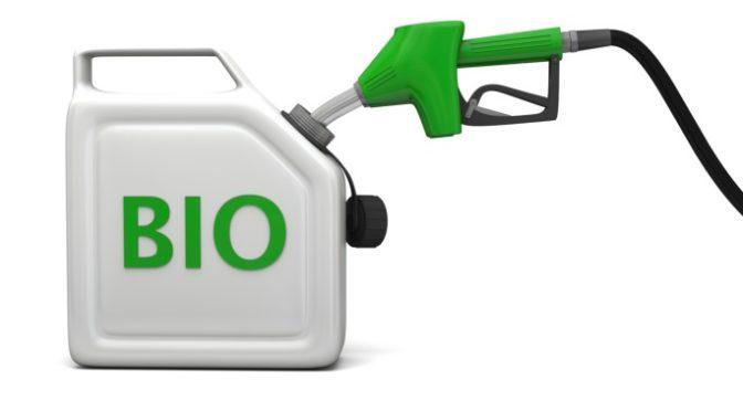 STOCK_biofuel