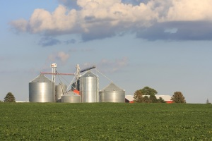 NEBRASKA FARM NUMBERS LOWER, AREA UNCHANGED
