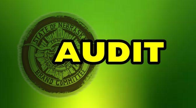 Brand Committee Audit