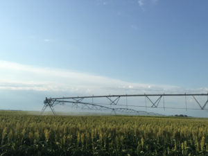 Crop production efficiency, margin improvement are aim of Aug. 24 field day in Hays
