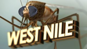 Garden Co. horse tests positive for West Nile Virus