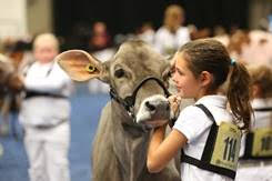 Central Plains Dairy Foundation Accepts $225,000 Challenge Grant