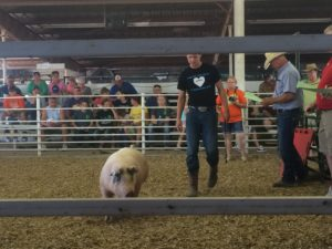 Young man of Wilcox gives his 4-H pig proceeds to scholarship fund