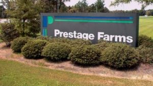 Unanimous Vote by IA Wright Co Board For Prestage Farms
