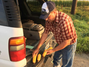 (AUDIO) Pro Farmer Crop Tour Peg NE Corn Numbers Below USDA's and 2015 Tour Estimates