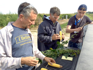 Midwest Crop Tour Day 1 Shows Variable Corn Yields