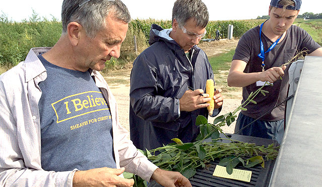 Crop scouts (left to right) Art Wittte, Brent Jadisch and Robert Van der Kooy measure yields in Nebraska on the western portion of the Pro Farmer Midwest Crop Tour. Volunteers spend four days analyzing crop yield in seven Midwest states. (DTN photo by Pamela Smith)