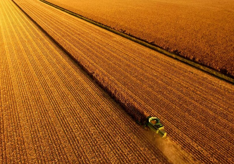 USDA Weekly Crop Progress- Corn, Soybean Harvests Lag Average Pace
