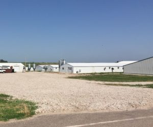 Investigation finds no conflict in Yankton hog farms votes