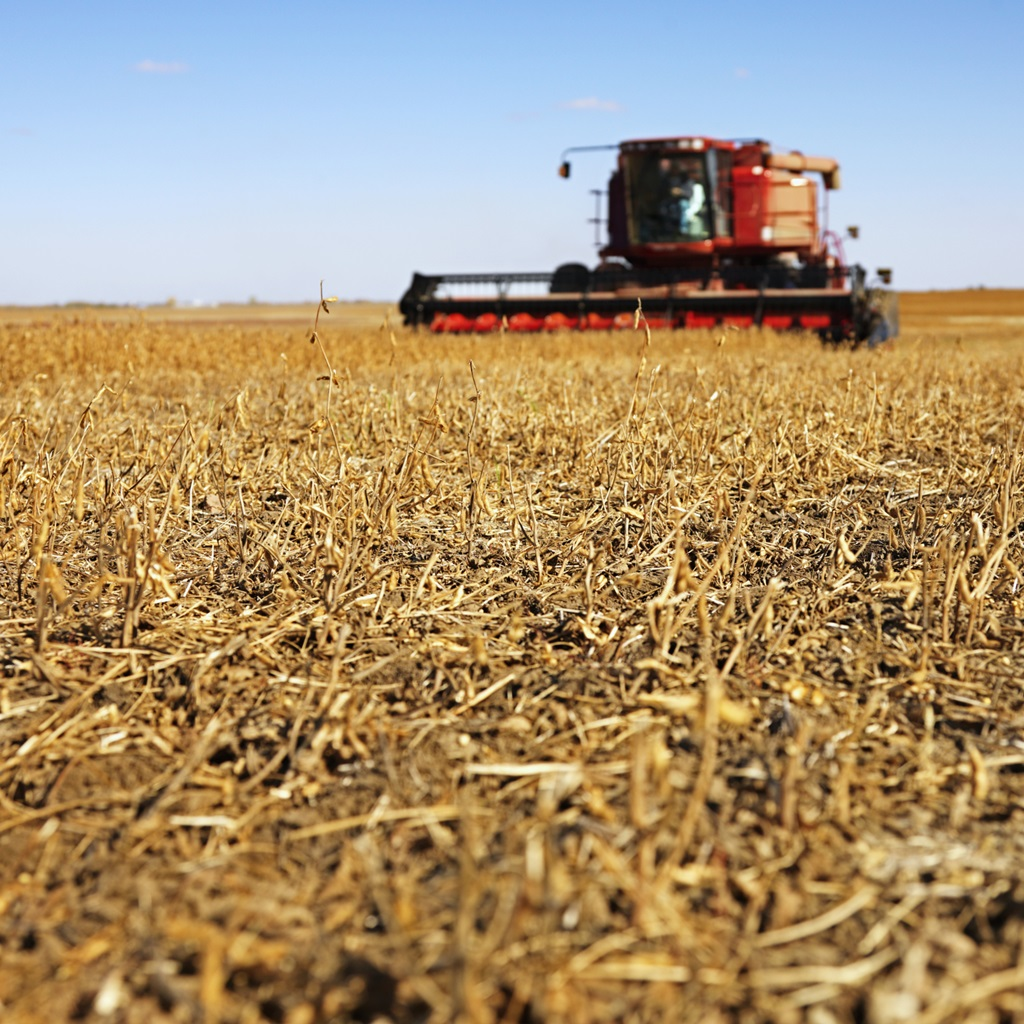 Motorists urged to be alert during harvest season