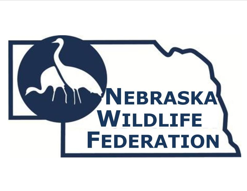 Wildlife Federation Announces Wildlife Award Winners