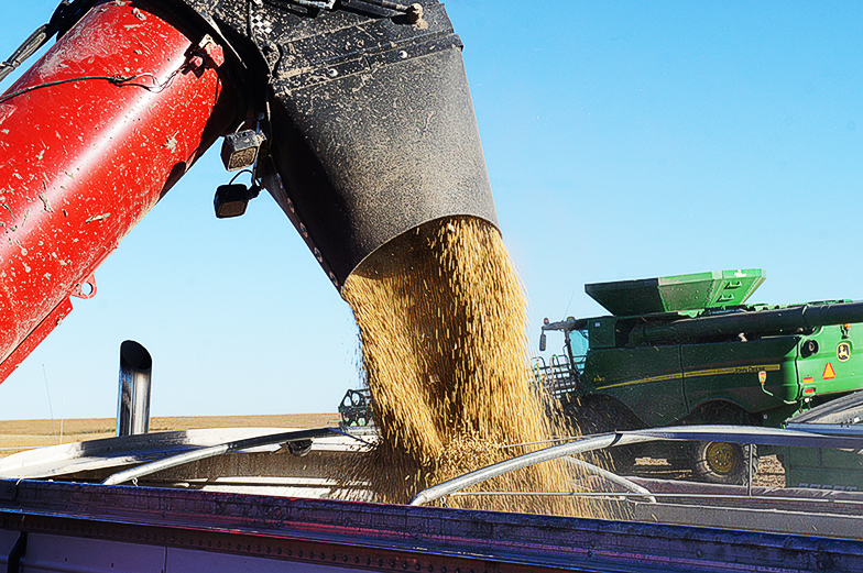 China buys U.S. soybeans a day after trade talks – traders