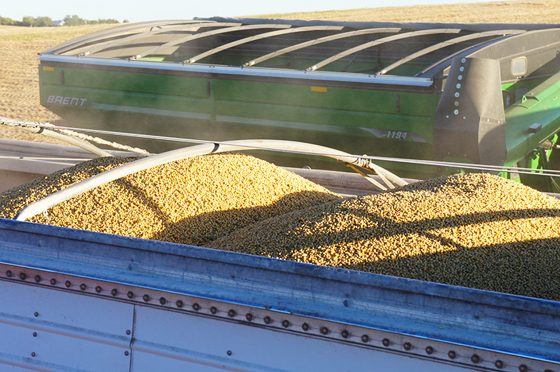 Soybean Growers Back in D.C. to Talk Trade Resolution