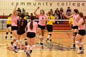 Hawks fall to Kirkwood in straight sets