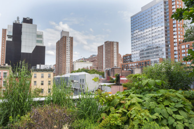 Will This New Bill Level the Playing Field for Urban Farms?