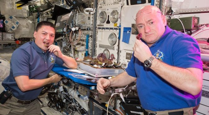 in-focus-scott-kellys-year-in-space