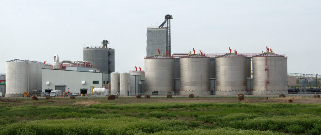 Cruz Proposal Could Harm Corn Ethanol, Analysis Finds