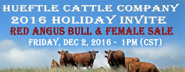 Hueftle Cattle Co