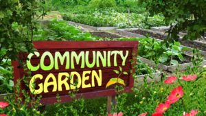 Scottsbluff hosting community meeting to discuss potential community garden