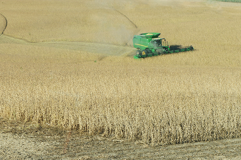 Rules, Risks of Adjusting Crop Insurance Yields for Soybean Damage
