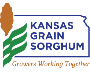JESSE MCCURRY TO LEAD KANSAS GRAIN SORGHUM AS EXECUTIVE DIRECTOR