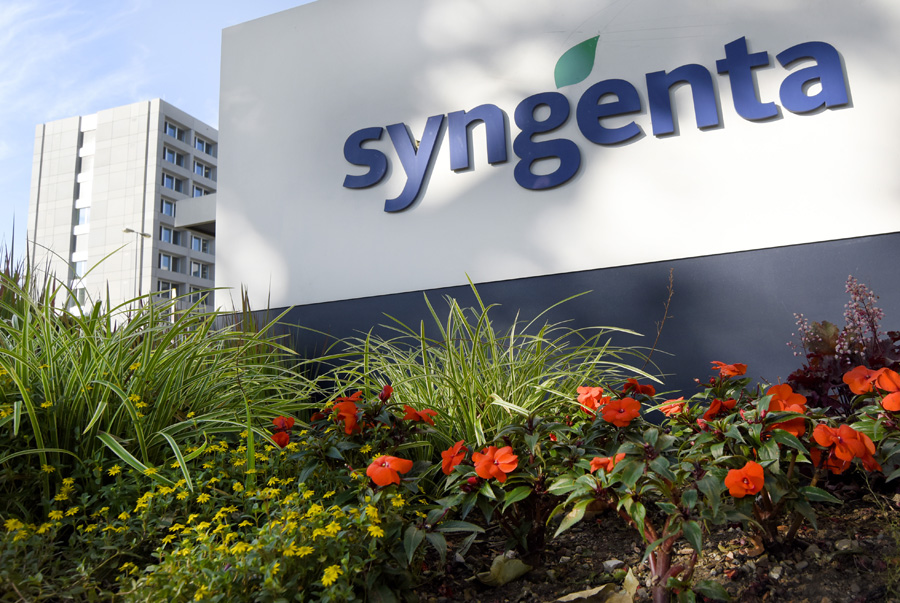 ADM, Cargill still pursue Syngenta over China GMO corn rejections