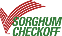 Photo courtesy of the Sorghum Checkoff