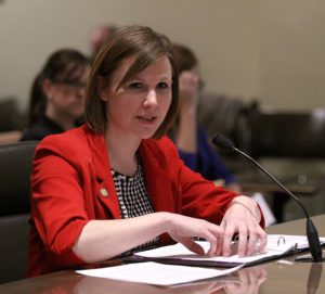Judicial committee hears bills on protection orders and criminal immunity