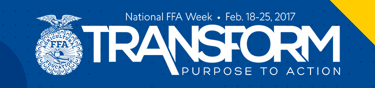 Listen To True Blue Salutes Podcasts During Ffa Week