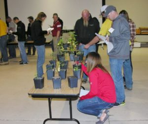 Crop Scout Training for Pest Managers March 14