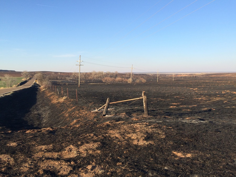 Kansas County Hard Hit by Fires Gets Fencing Funds