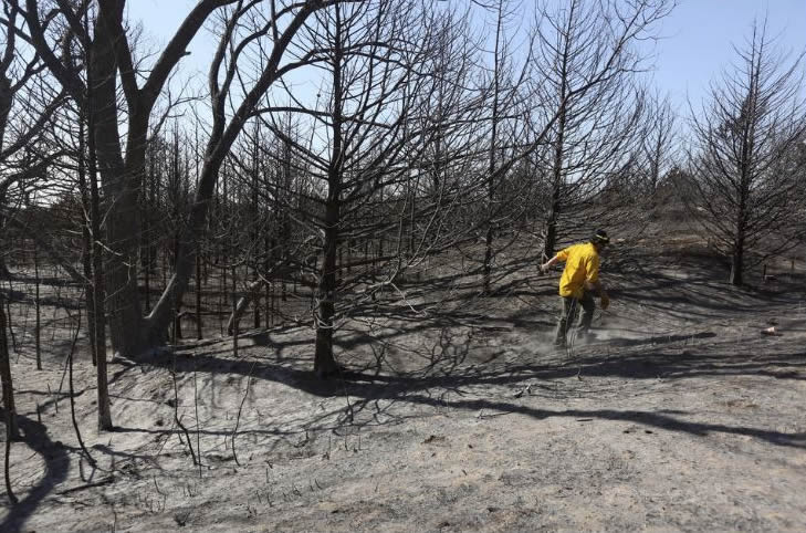USDA Offers Help to Fire-Affected Farmers and Ranchers in Kansas