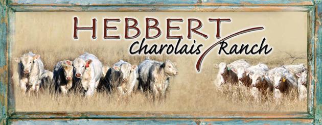 Hebbert Charolais Ranch