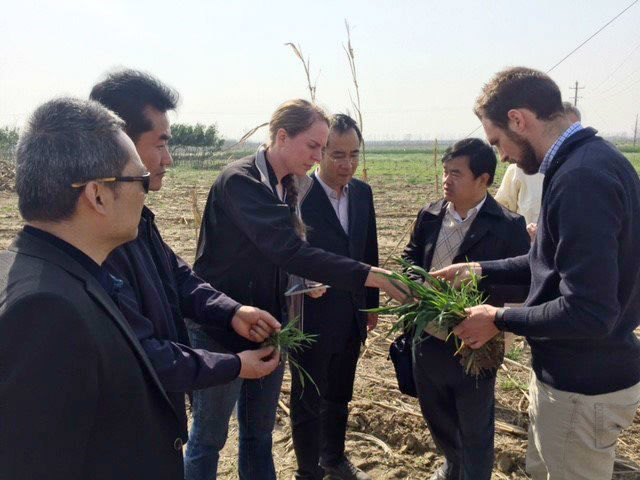 Local extension educators are part of farming collaboration in China