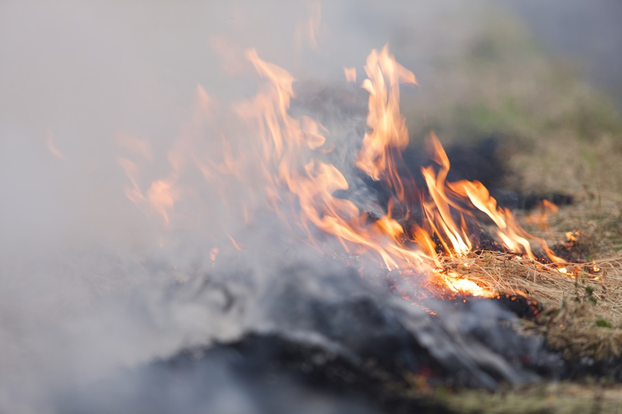 DHHS Activates Smoke Advisory System for Flint Hills Burns
