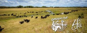 Lonesome River Ranch Gearing Up for 2017 Cattlemen's Ball