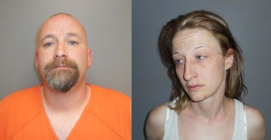 Two arrests in minor marijuana grow operation