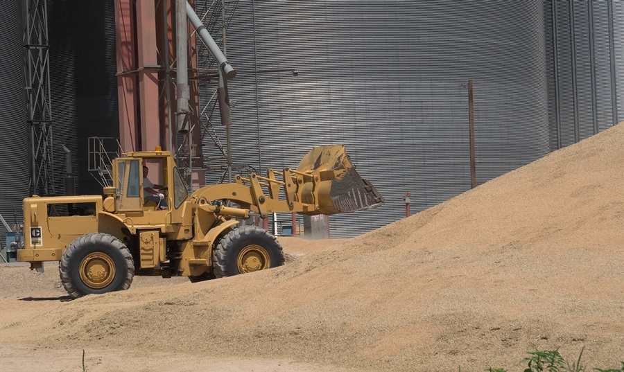 Elevators Scrambling as Kansas Wheat Harvest Nears