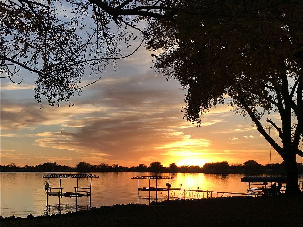 Carp Removal At Johnson Lake