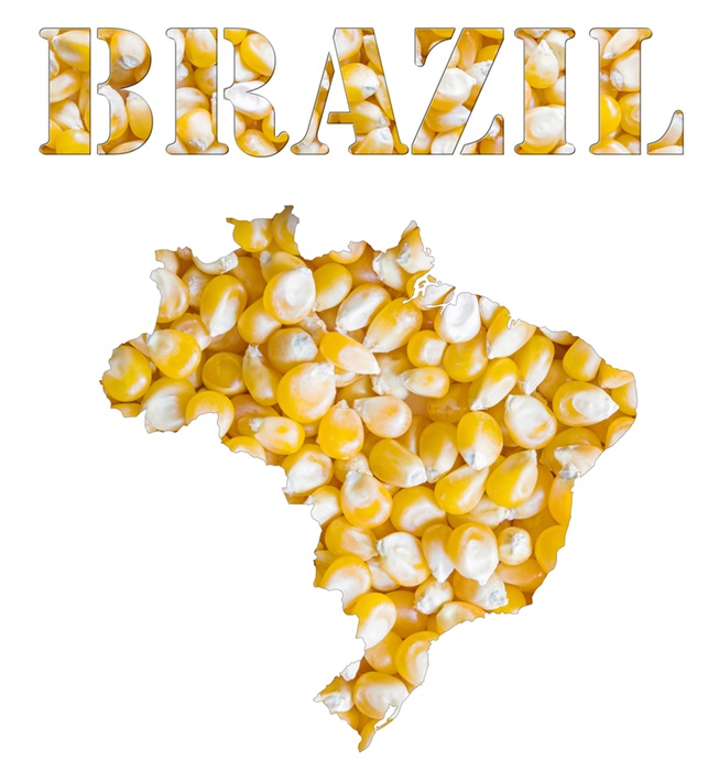 Mexico Buys Cheaper Brazil Corn as NAFTA Talks Loom