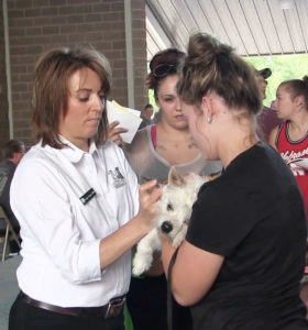 Pet health fair stresses importance of vaccinations
