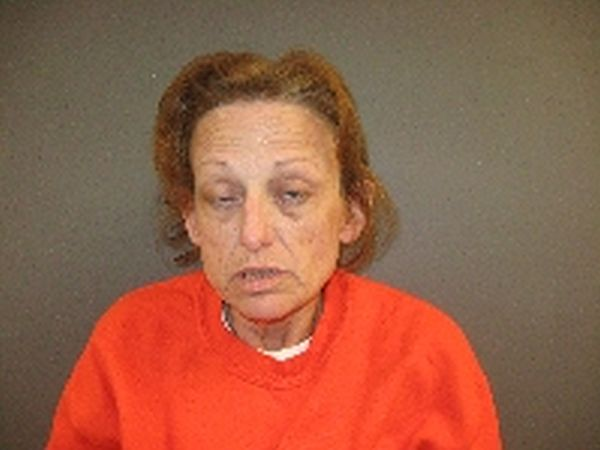 Woman arrested on felony charges following check welfare call