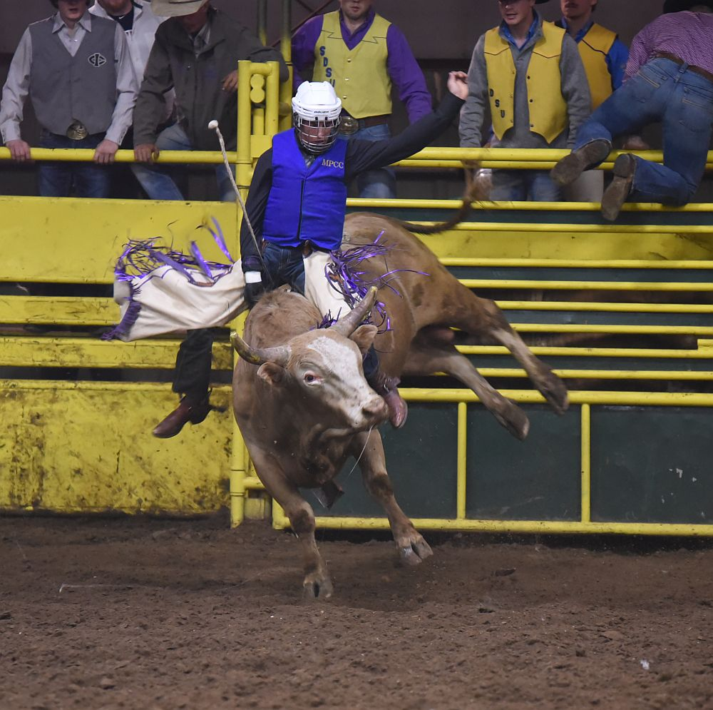 Wickett: bull riding is all about focus