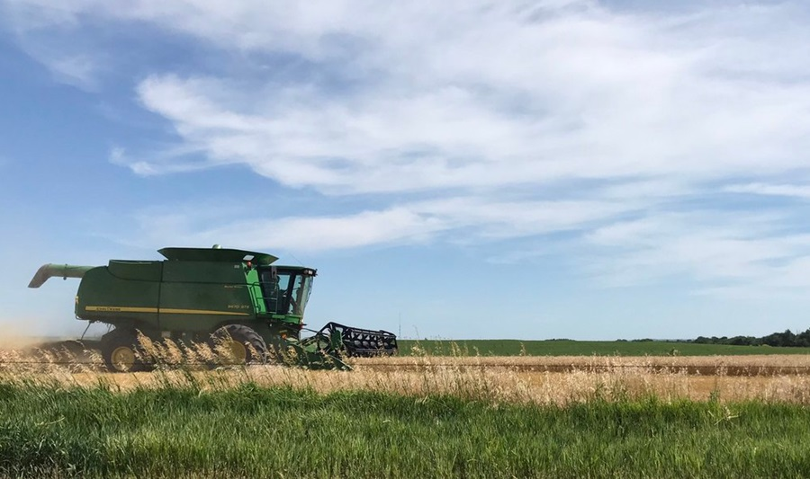 Kansas Farmers Say Wheat Yields Lower Than Last Year