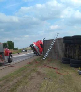 Numerous cattle killed after semi crashes