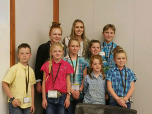 Goshen 4-H competes in Showcase Showdown