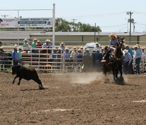 Nebraska State High School Final Rodeo Results