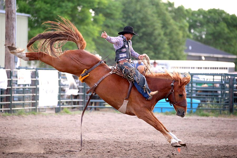 Results from the Plum Creek Rodeo
