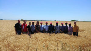 (AUDIO) Nigerian and South African Millers Visit Wheat Harvest in KS and NE