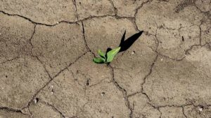 Nebraska Centers Help Develop New Weekly Drought Warning System
